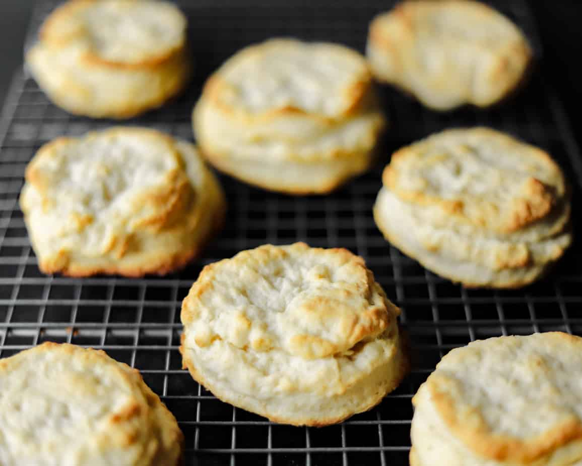 Golden brown cream biscuits just pulled from the oven cool on a rack